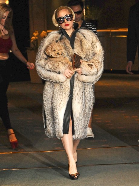 Lady Gaga wears a fur coat in Bulgaria.