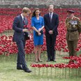 Prince Harry laying a poppy
