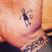 Image 1: David Beckham Harper Tattoo